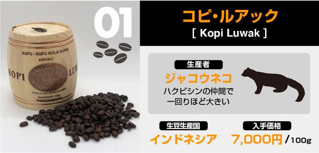 猫 の フン コーヒー
