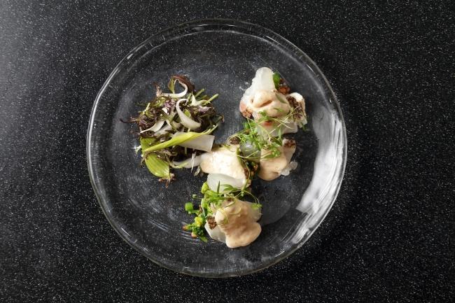 愛媛産『ミカン鯛』のカルパッチョ 日向夏と生姜、白胡麻のヴィネグレットソース