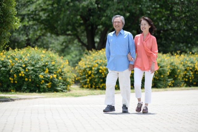 加齢により低下する筋肉の合成力をサポート。
