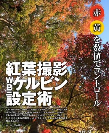 ▲色温度設定でここまで変わる紅葉の色再現をじっくり解説します。