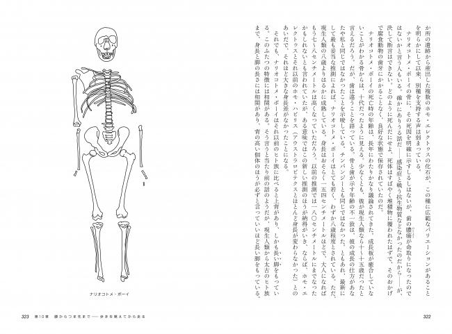 ▲本書には80を超える挿絵が掲載されているので、  わかりやすい