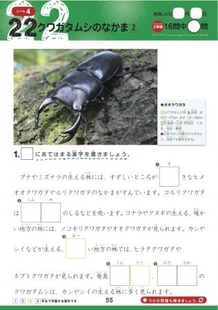 ▲【昆虫】分類、からだの大きさ、食べ物などのデータも充実!