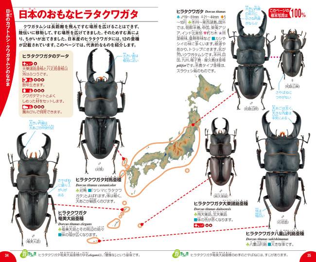▲日本の種類は全種紹介! 見分けるのに役立つ情報が満載です。
