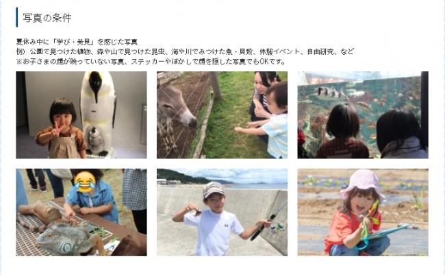 ▲夏休み中の「学び・発見」写真の例
