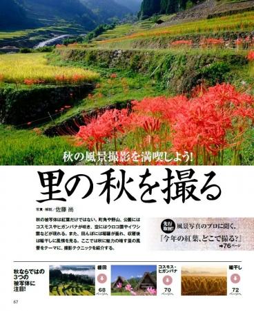 ▲棚田、ヒガンバナ&コスモス、稲干し、秋ならではの里のモチーフに注目
