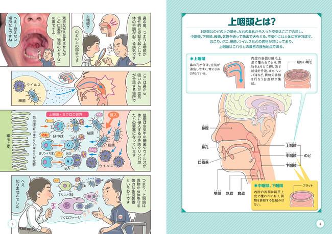 上咽頭が悪い細菌の侵入を阻止!