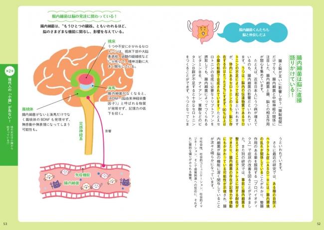 腸内細菌と脳の関係についても解説したページ。小腸だけでなく、それを取り巻く胃腸全般についても、様々な情報を紹介しています。