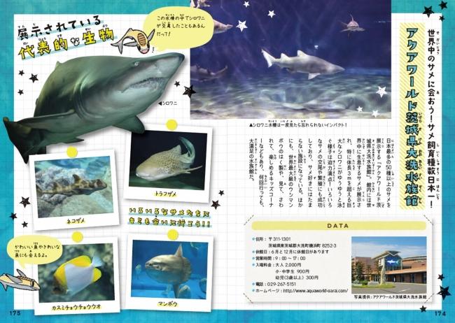 サメ好きにとっては天国のような場所…それがアクアワールド茨城県大洗水族館!