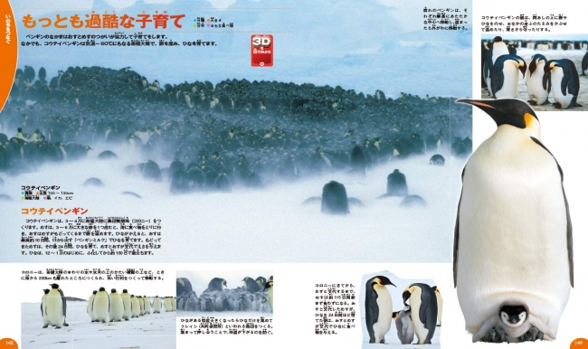↑極寒で子育てをするコウテイペンギン。子孫を残し、いのちをつないでいくために、生き物はさまざまなくふうをしています。