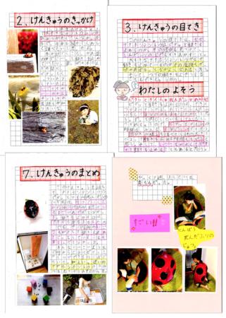 江崎心瑚さん研究ノートの一部