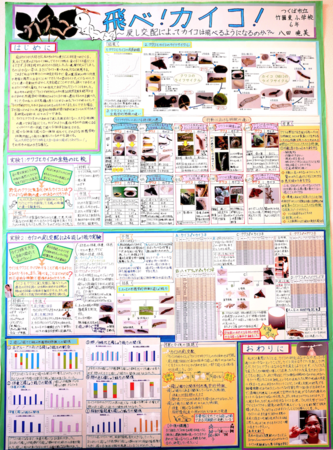 八田 暁美さんの発表用ポスター