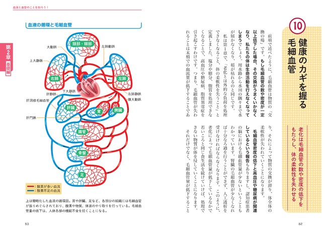 ↑人体に関する情報は日々刻々と更新されています。難解になりがちな人体構造も、わかりやすくイラスト付きで解説します。