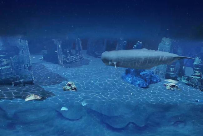▲マッコウクジラと一緒に海の探検に出発!