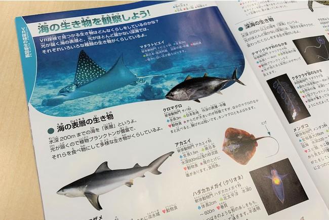 ▲VRに登場する海の生物を図鑑形式で解説!
