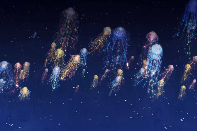 ▲海の旅を彩る美しいクラゲたち