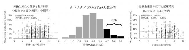 クロノタイプと生産性のグラフ