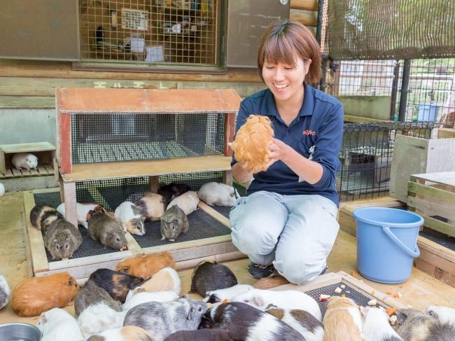 大人の女性向け限定企画!4人の女性飼育員が動物園を案内する特別 ...