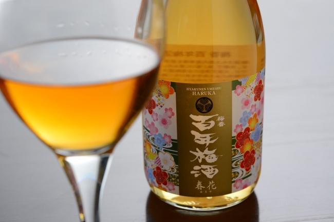 百年梅酒春花