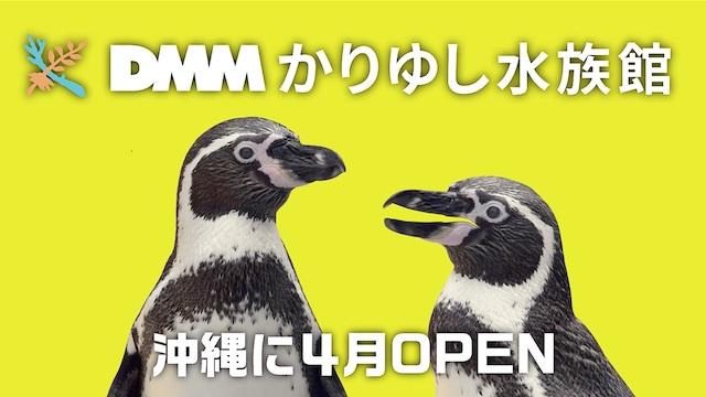 かりゆし水族館 cm