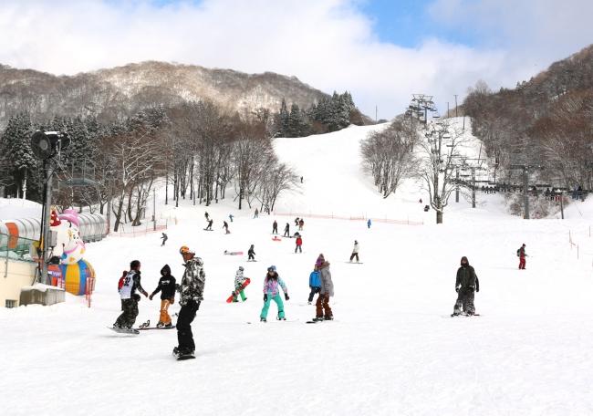 場 スキー 奥 伊吹