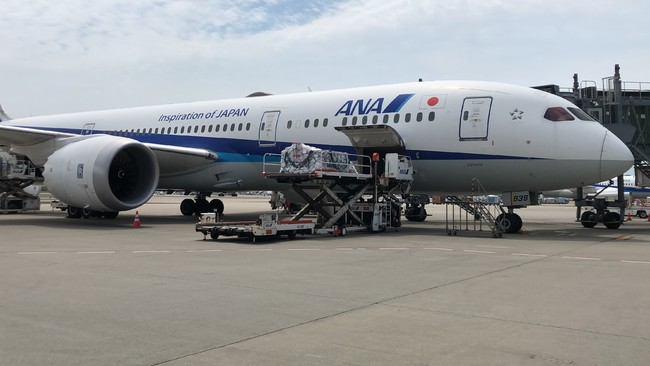 6月21日酸素濃縮器出荷の様子(羽田空港)※写真提供:ANA Cargo