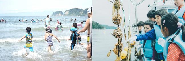 活動イメージ:マリンアクティビティ、海辺の環境保護など海に関する多様なプログラムを提供