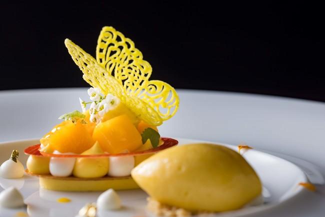 宮崎県産マンゴーとフロマージュブランのムース  エキゾチックフルーツのソルベを添えて