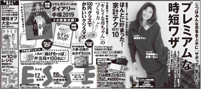 FSSE12.1月合併号新聞広告