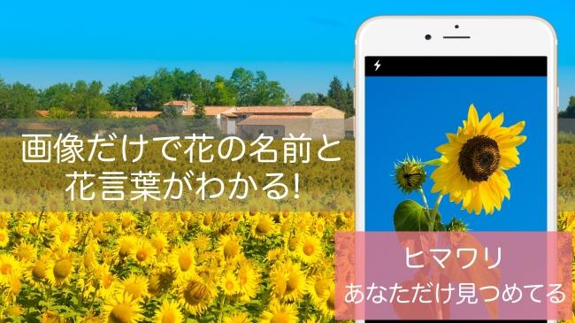 アプリ 名前 花 の