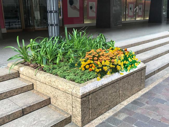 帝国ホテル前花壇イメージ