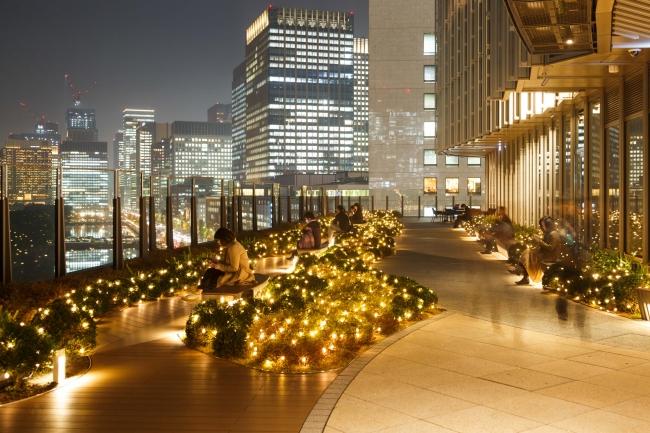 Park View Christmas Garden イメージ