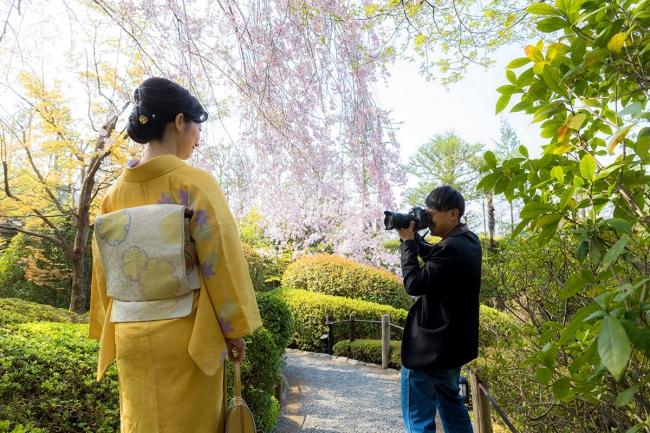 ロケフォト|お花見会の思い出を美しい写真で思い出に残してみませんか?