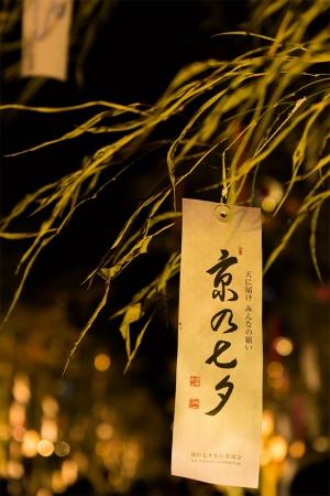幻想的な光のアートに今年もため息。 堀川遊歩道は願いを書いた短冊や笹の葉が涼しい風に吹かれて一段と光り輝きます。