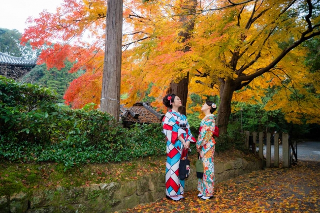 着物でお散歩すると思いがけずステキな紅葉にめぐりあえます。