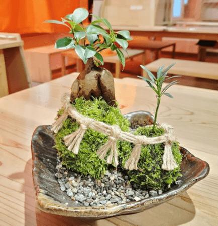 △伊勢苔玉作家、TOMOKOさんの作品。夫婦岩を伊勢の里山で自生している苔を利用した苔玉で表現した。