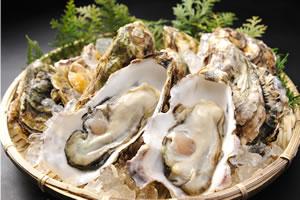 ▲栄養豊富な伊勢湾に浮かぶ答志島の桃取牡蠣。伊勢湾の海で育った1年牡蠣でまさしく桃のように瑞々しく、プリっとしていて、甘みが強く、濃厚です。