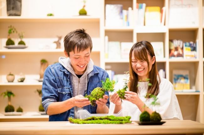 夫婦苔玉は2人で1つの作品を作ることが出来る。