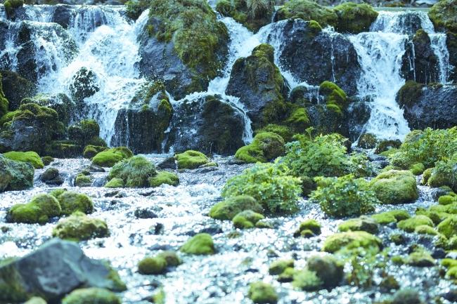 羊蹄山の雪どけ湧き水