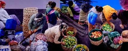 チューシン・スティアディカラ キンタマーニ市場 II 1949年- インドネシア