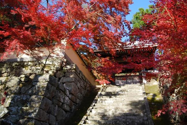 廣福寺の紅葉