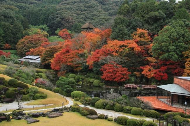 日本庭園 慧洲園の秋景色