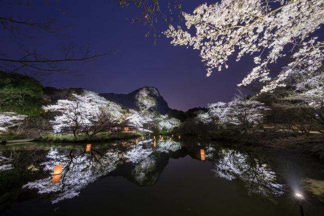 御船山楽園 九州最大級のライトアップ