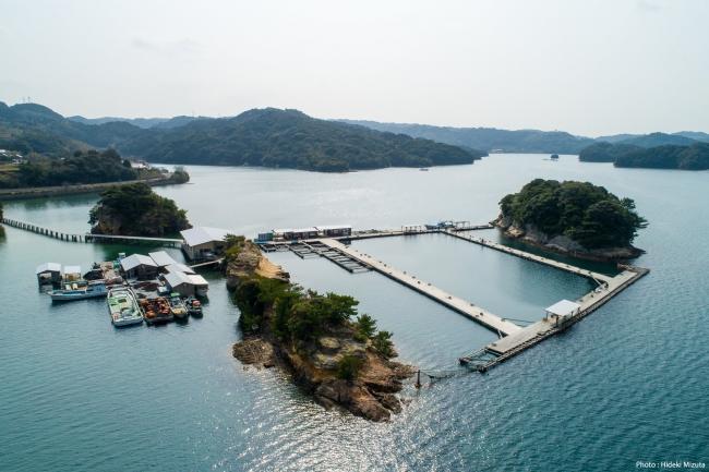 空から見た仮屋湾遊漁センター(佐賀県観光連盟 写真:水田秀樹)