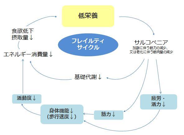 出典)厚生労働省「日本人の食事摂取基準(2015年版)策定検討会」 報告書