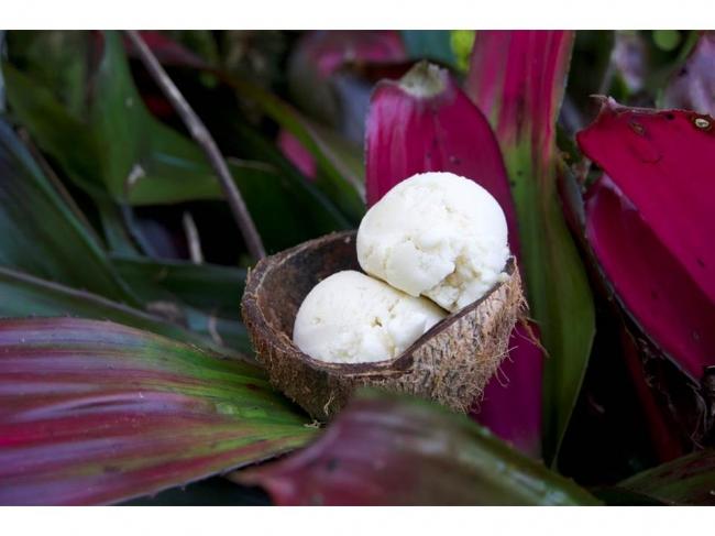 マウイ本店のココナッツアイスクリーム