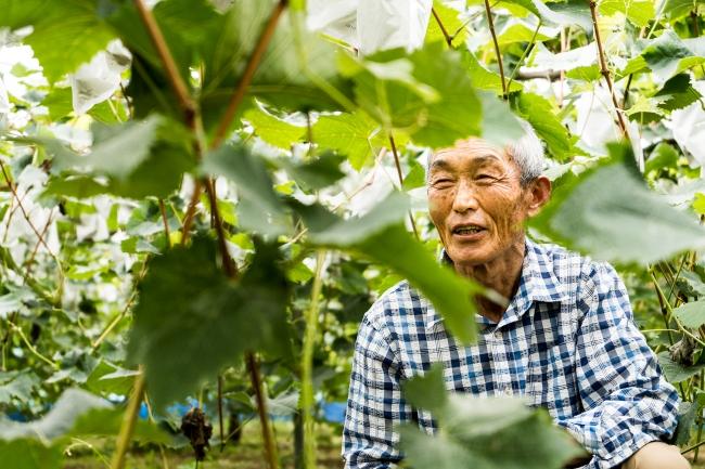 繁忙期の人手不足に困る農家にとって、短期雇用ニーズとマッチングできる「シェアグリ」は課題解決を強力に推進するサービスです。