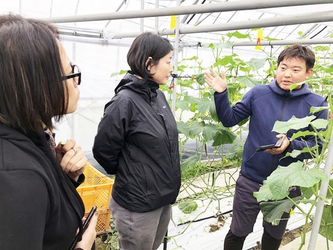 宮材件新富町には先進技術の導入に意欲的な農家と、農業に関する求人情報を探しているユーザーとのマッチングについて実証実験が開始されています