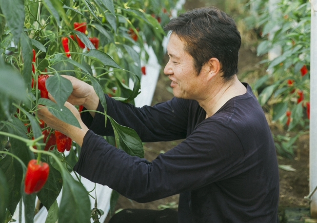 スマート農業の集積地を目指す新富町には、IoTやロボットを活用する農家がいます。
