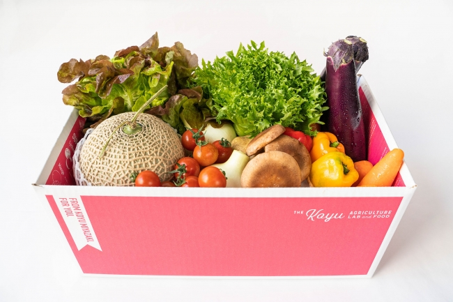 新鮮詰合せ!野菜・フルーツセット。※画像はイメージです