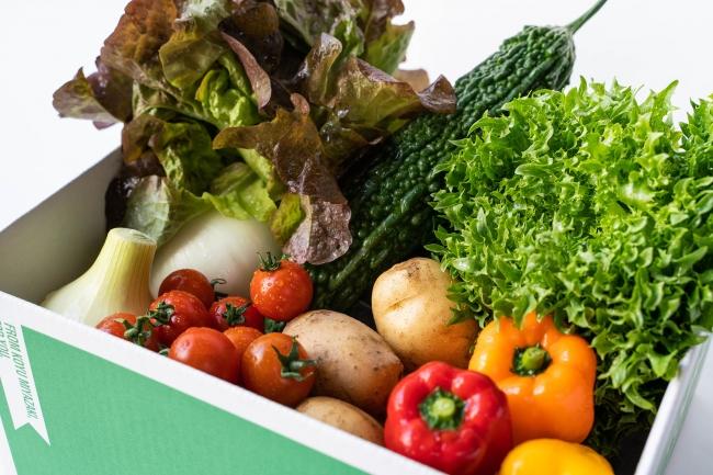 野菜ソムリエが選ぶ・旬のこゆ野菜セット。※画像はイメージです